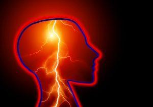 corteccia-tronco-cervello